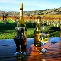 Photo taken at Navarro Vineyards & Winery by Mark M. on 11/23/2012