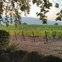 Photo taken at Quinta da Pacheca by Maaike B. on 7/11/2013
