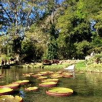 Photo taken at Jardim Botânico do Rio de Janeiro by Donato d. on 7/13/2013