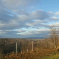 Photo taken at Scenic View by Cynthia R. on 11/22/2016