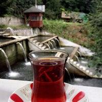 Photo taken at Yanıkoğlu Alabalık Tesisleri by Ebru Ö. on 8/27/2017