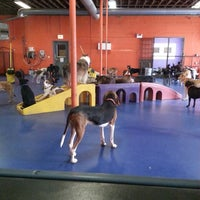 Photo taken at Urban Pooch Canine Life Center by Matt H. on 9/23/2013
