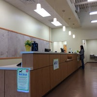 Dogwood Veterinary Emergency and Specialty Center