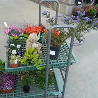... Photo Taken At Armstrong Garden Centers By Michael L. On 3/15/2013 ...