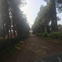 Photo taken at Ghasroldasht Gardens | باغ هاى قصرالدشت by Mohamadali D. on 2/21/2016