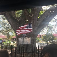 Photo taken at The Old Senator Tree by Ana L. on 1/26/2017