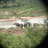 Photo taken at Lower Sabie Rest Camp, Kruger National Park by Gabriel A. on 12/20/2012