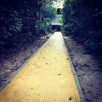 Das Foto wurde bei UFAM - Universidade Federal do Amazonas von Sérgio F. am 10/3/2012 aufgenommen