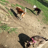 Photo taken at Baldy View Dog Park by Twitter's ✰. on 8/5/2016