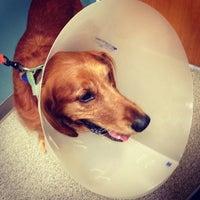 Photo taken at VCA Animal Care Hospital by Jon C. on 7/24/2013