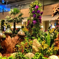 Photo taken at Singapore Changi Airport (SIN) by Kemal K. on 7/8/2013