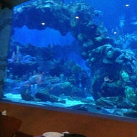 Photo taken at Coral Reef Restaurant by Dianne on 1/31/2013