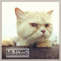 Photo taken at Letoro Grooming by Squido N. on 8/17/2013