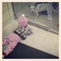Photo taken at Hillsborough County Animal Services by Rachel L. on 12/23/2012