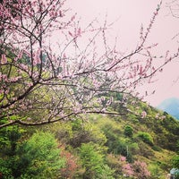 Photo taken at 구구산장 by Joohyoung P. on 4/19/2014