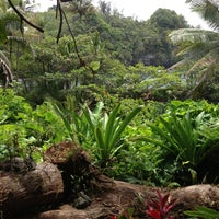 Photo taken at Hawaii Tropical Botanical Garden by kerry l. on 6/12/2013