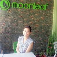 Photo taken at Moonleaf by Siegrid E. on 11/21/2014