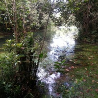 Das Foto wurde bei MacRitchie Nature Trail von Christian Oliver C. am 5/12/2013 aufgenommen