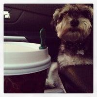 Photo taken at Starbucks by Crystal M. on 11/22/2013