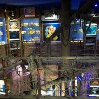 12/19/2017 tarihinde Vesile T.ziyaretçi tarafından Deniz Biyolojisi Müzesi'de çekilen fotoğraf