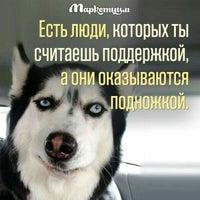 Снимок сделан в МФЦ района Покровское-Стрешнево пользователем Екатерина М. 6/15/2016