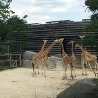 Foto tirada no(a) Parc zoologique de Paris por Hasti K. em 7/8/2016