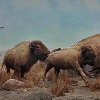 Photo taken at The Manitoba Museum by Jordan M. on 5/18/2013