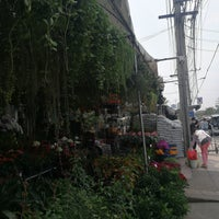 Photo taken at Siam Orchid Center by Acare A. on 2/22/2018
