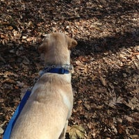 Photo taken at Burnt Mills East Park by Gerald A. on 11/22/2012