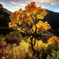 Photo taken at Sabino Canyon Recreation Area by Christopher S. on 12/21/2012