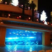 11/26/2012 tarihinde Gretchen W.ziyaretçi tarafından Golden Nugget Pool'de çekilen fotoğraf