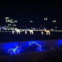 Photo taken at Mesa Arizona LDSTemple Grounds by Amanda H. on 12/18/2012