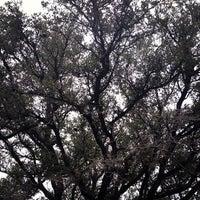 Photo taken at Houston Baptist University by Arsalan R. on 10/27/2012