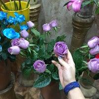 Photo taken at Khosheh Flower Shop   گلفروشی خوشه by Zeynab H. on 2/25/2016