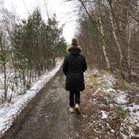 Photo taken at Molse Meren by Janna B. on 3/17/2018