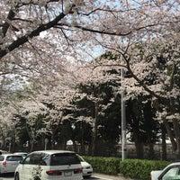 Photo taken at 八柱霊園 8区105側 by lala m. on 4/6/2016