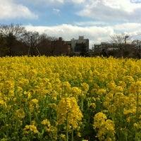 3/25/2012にsojiro m.が蘆花恒春園 (蘆花公園)で撮った写真