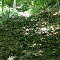 Photo taken at Thompson Pond Nature Preserve/Stissing Mountain by Julietta V. on 7/14/2013