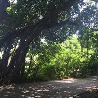Photo taken at Coconut Grove by Ale R. on 9/4/2017