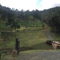 Photo taken at Hacienda Munoz by Jess on 3/31/2016