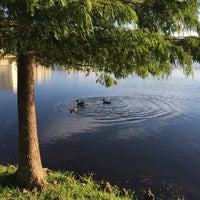 Photo taken at Lake outside of Publix by Erin L. on 10/16/2015