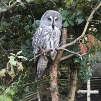 Photo taken at Owls by Glynn on 10/2/2016