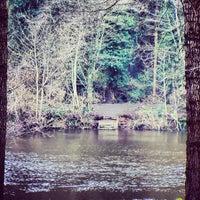 Photo taken at Portglenone Forest Park by Pablo M. on 3/23/2013