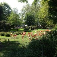 Das Foto wurde bei Kölner Zoo von Ekaterina K. am 5/19/2013 aufgenommen