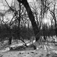 Photo taken at Caldwell Woods Bicycle Trail (North Branch Trail) by Arthur L. on 2/14/2014
