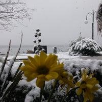 1/24/2016 tarihinde Kevser A.ziyaretçi tarafından Gülizar Bahçe'de çekilen fotoğraf