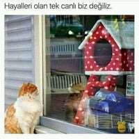 Photo taken at Yapi Kredi Bankasi Beylikdüzü Beykent Şubesi by Fahri G. on 1/2/2017
