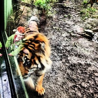 Photo taken at Dublin Zoo by Ronan M. on 1/6/2013