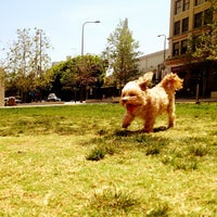 Photo taken at LAPD Lawn Dog Park by Emerson Q. on 4/2/2013