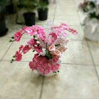 3/24/2016 tarihinde Nilay Y.ziyaretçi tarafından Yiğitbaşı Çiçekçilik'de çekilen fotoğraf